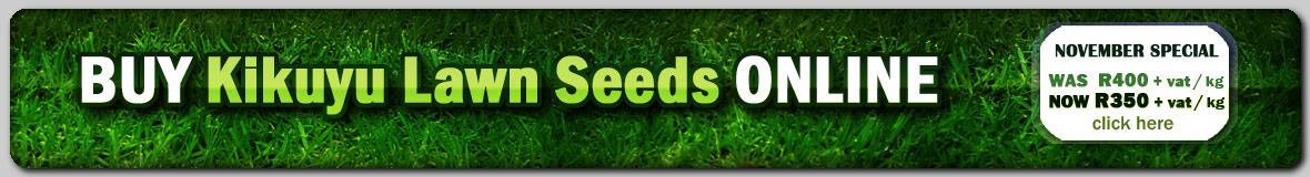 Buy Kikuyu Lawn Grass Seeds Online @ GG Online Garden Shopping Website