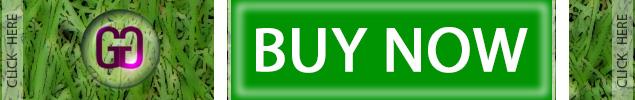 GardenGoods.co.za - Online Garden Centre! Buy turf / lawn seeds per kilogram / retail on our online garden shop - Perennial Summer Lawn - Turf-type Lawn - Sports Fields Turf - Cool Season Grass Seeds!